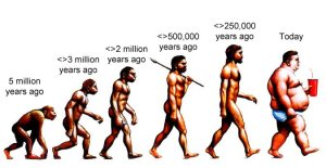 the_evolution_of_man_ages